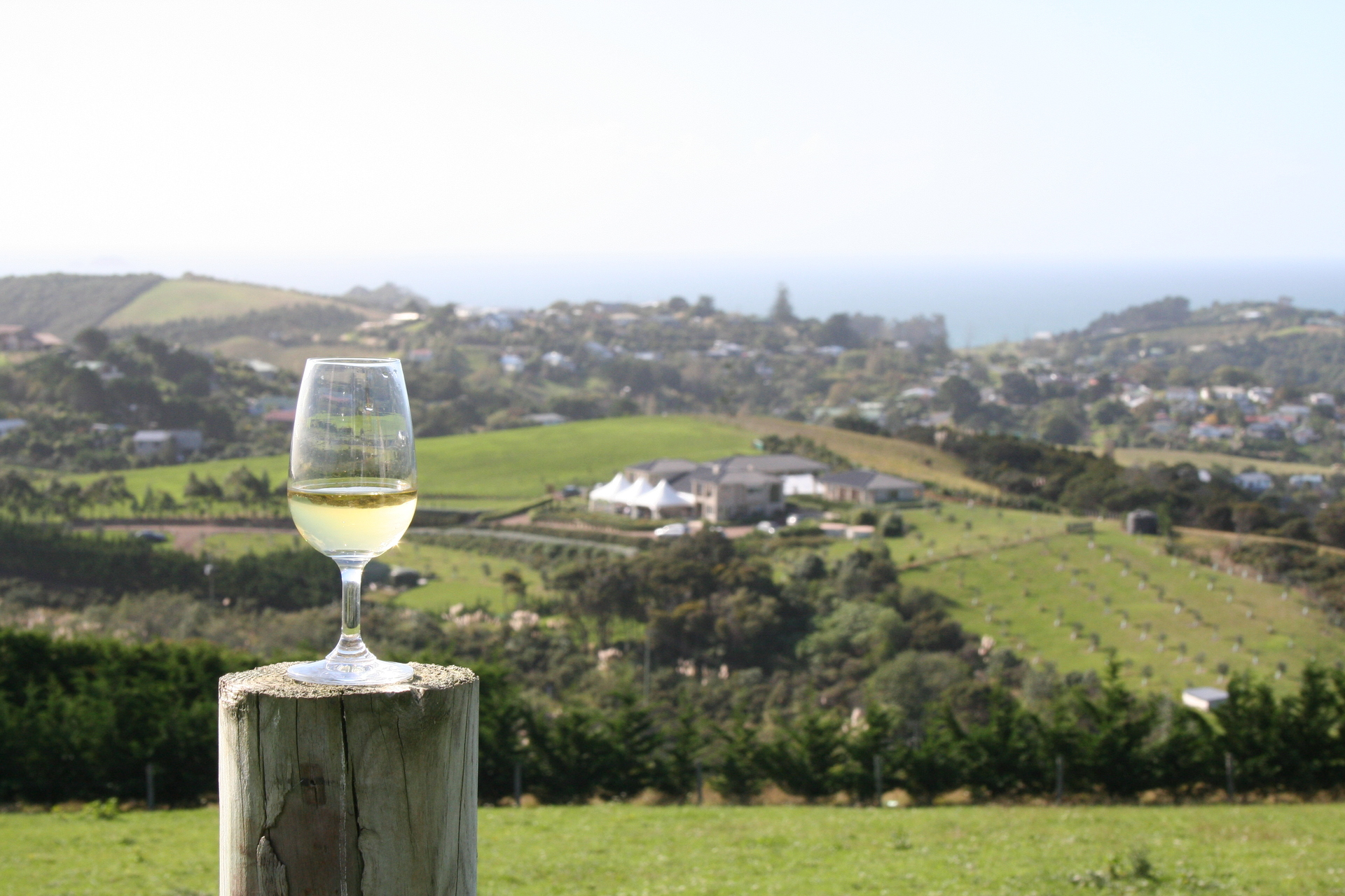 white-wine-with-a-view-1322142-1920x1280