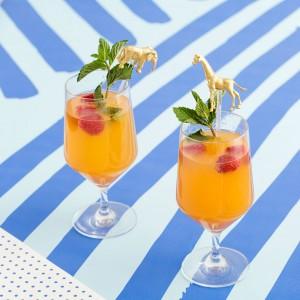 Mimosa-Final2