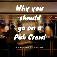 Why you should go to a Pub Crawl (2)